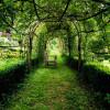 Saurons-nous encore écouter la voix d'un jardin ?