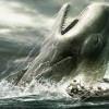 Du sexe de Moby Dick