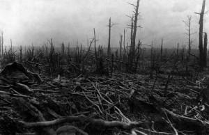 1917_Bois_St-Pierre-Vaast